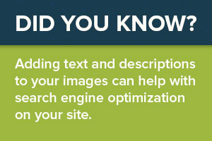 Adding text and descriptions to your images can help with SEO on your site.