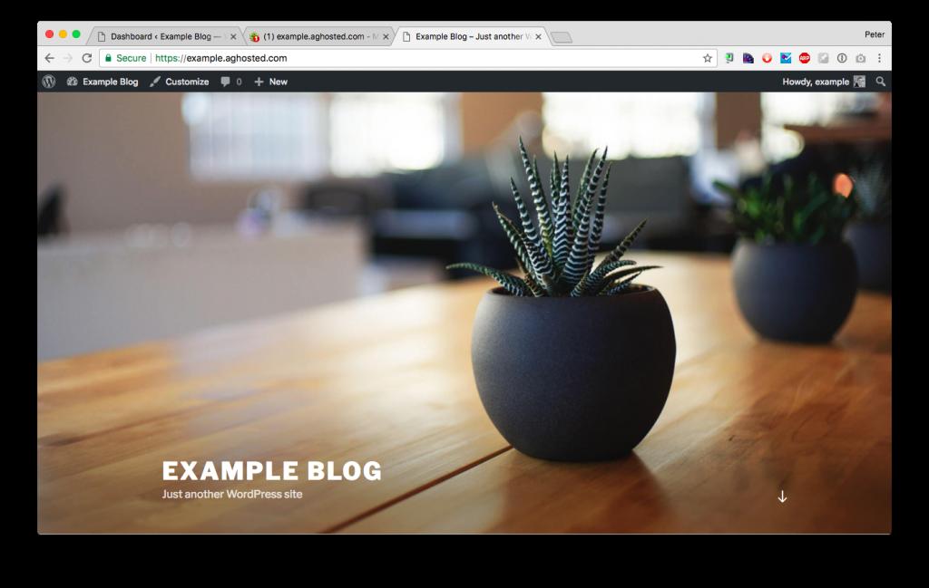 Convert your WordPress blog to use SSL - Agathon WordPress
