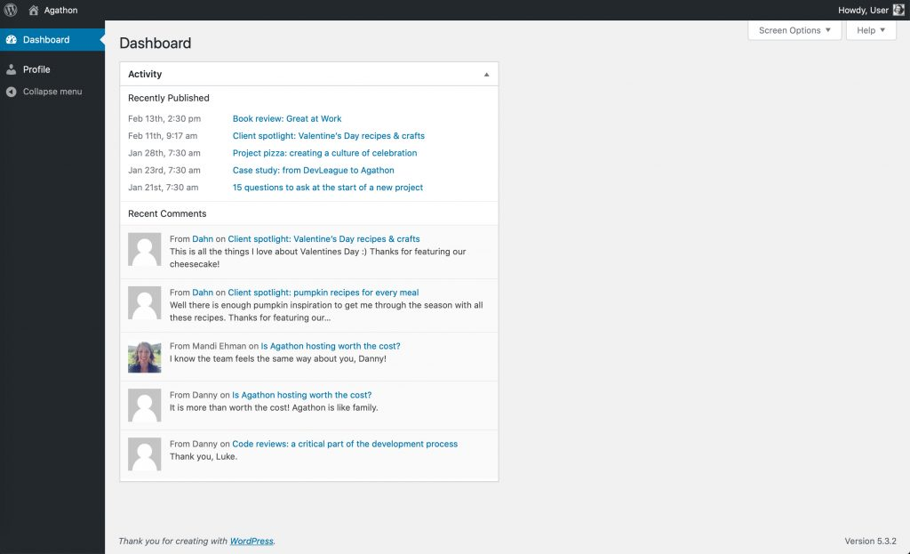 Screenshot of the WordPress dashboard for a user at the subscriber level