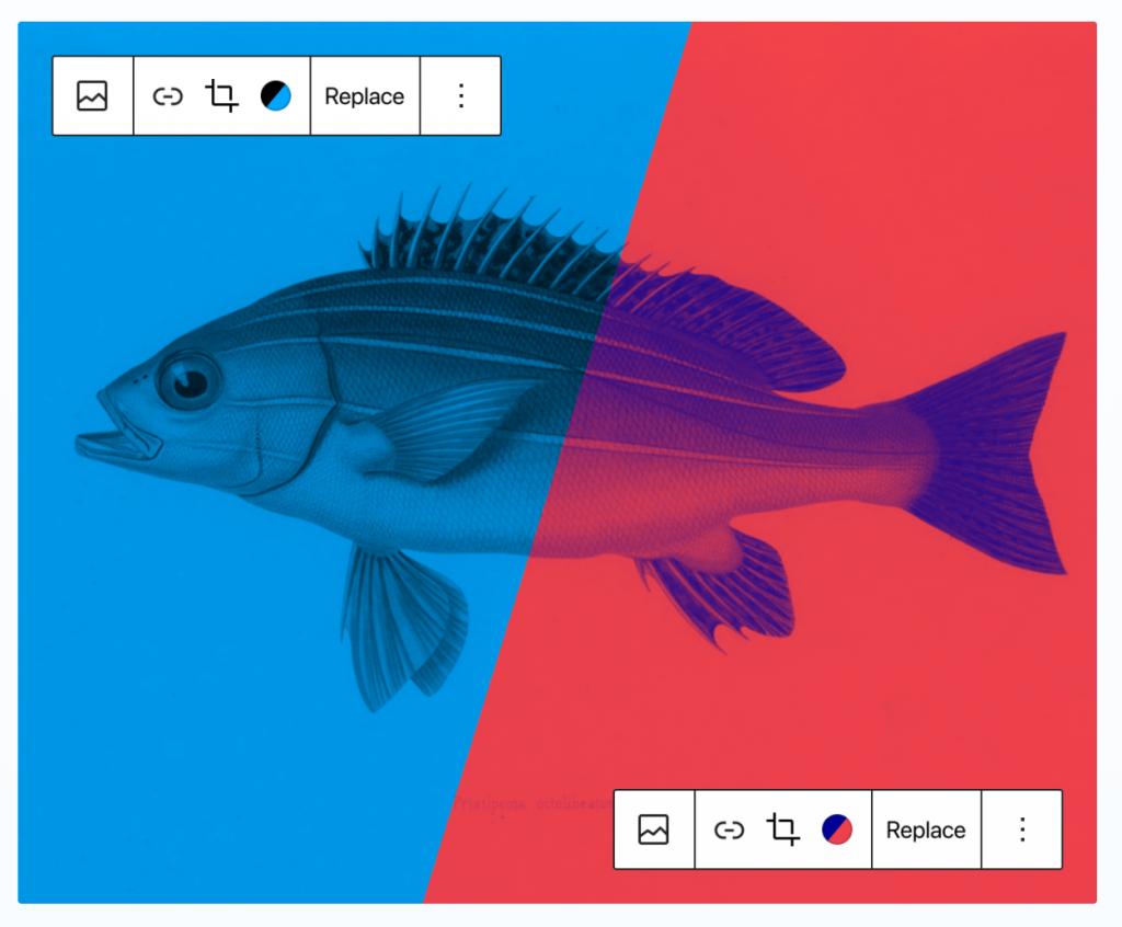 Screenshot of the duo tone feature in the new WordPress image block